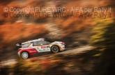 MONTECARLO 2014 PURE WRC-17